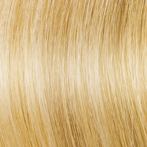 Colour 11 Light Golden Blonde Hair Extensions